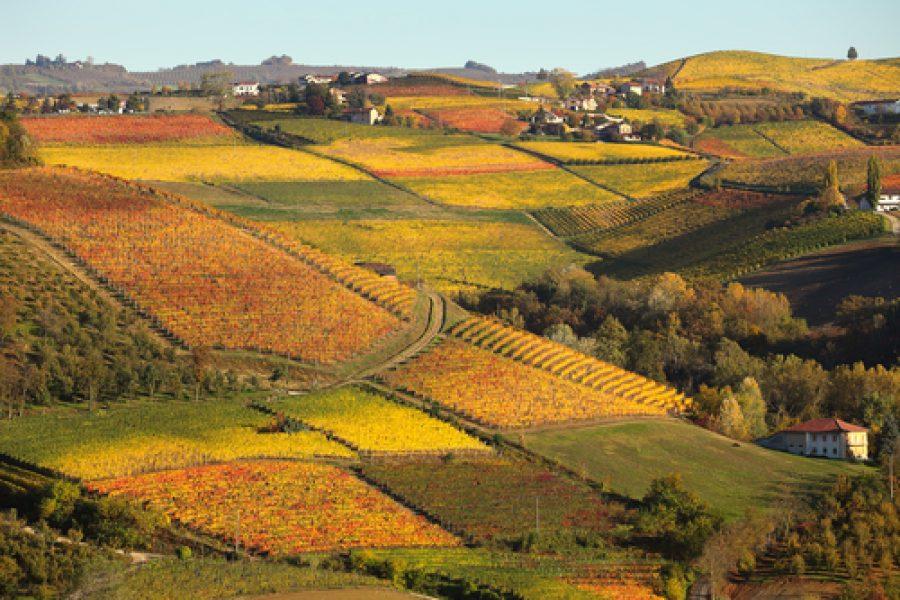 Piemonte nella Top ten europea